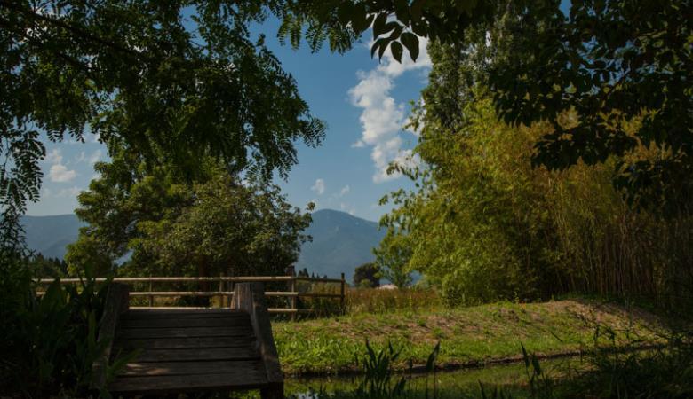 Camping le haras-Palau del Vidre_4